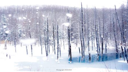 北海道の絶景3選!『シューパロ湖』『青い池』『白髭の滝』